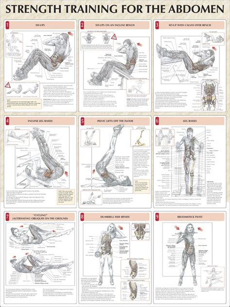 weight bench workouts charts 17 best ideas about strength training on pinterest