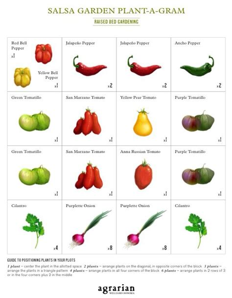 Salsa Garden Layout 25 Trending Square Foot Garden Layout Ideas On Pinterest