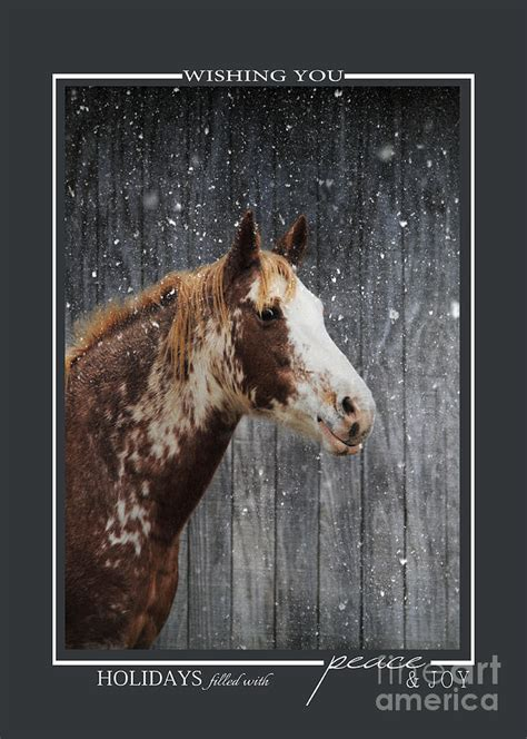 printable horse christmas cards horse in the snow christmas cards photograph by jai johnson