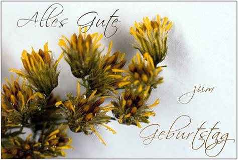 Geburtstagskarte Drucken by Sammlung Mit Kreativen Fotokarten Und Witzige