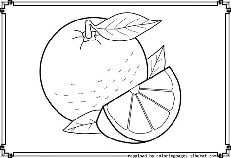 Orange Tree Coloring Page Coloring Home Orange Coloring Pages