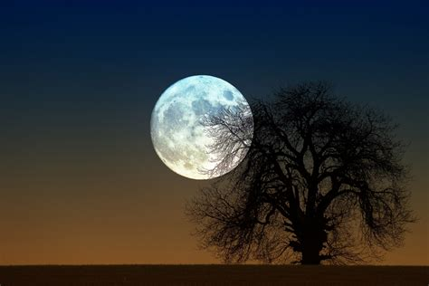 Moon Rising moon rise