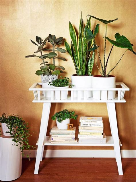 ikea plant ideas 25 best ideas about indoor plant stands on pinterest
