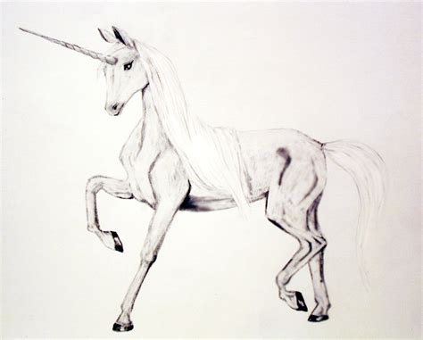 Drawing Unicorns by Unicorn Drawing By Lollycrook On Deviantart