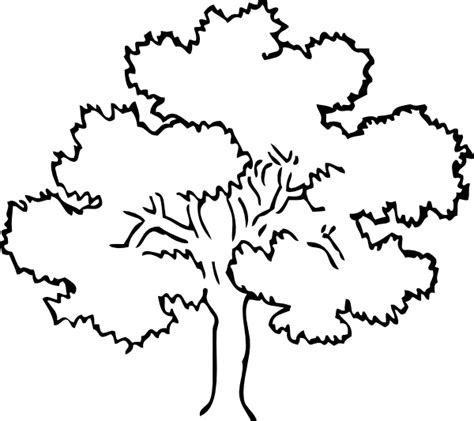 rainforest leaves coloring page coloring now 187 blog archive 187 rainforest coloring pages