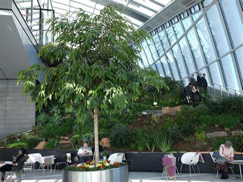 great plants  indoor gardens garden greenhouse