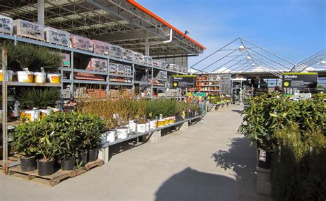 home depot garden center2 the wilderness