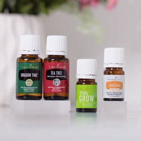 Living Rc Essential r c essential living essential oils