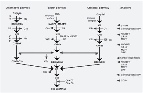 cat6 wiring diagram for cctv cat6 wiring diagram