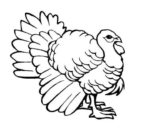 imagenes para dibujar reales free coloring pages of pavo para dibujar