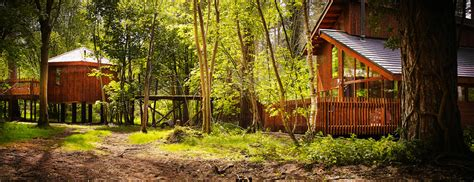 Tree Cabin Holidays by Luxury Family Treehouses With Tubs At Thorpe Forest