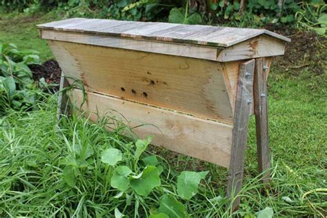 top bar hive nz beehives pod easy edible gardening