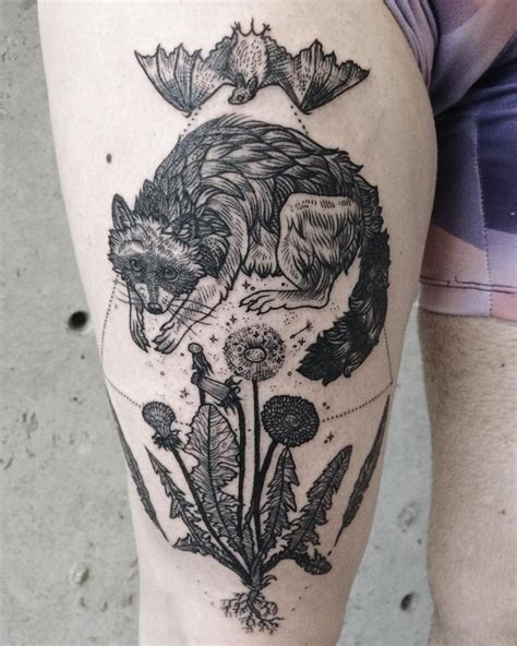 racoon tattoo 1000 ideas about raccoon on raccoon