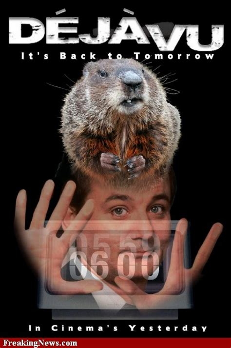 groundhog day like groundhog day poster my favorite moovies