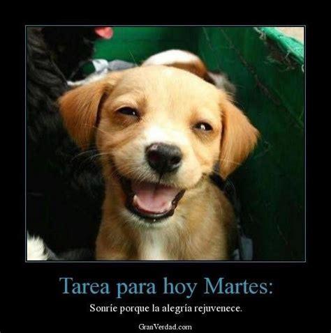 hoy es martes 48 best images about saludos d 205 arios on pinterest amigos