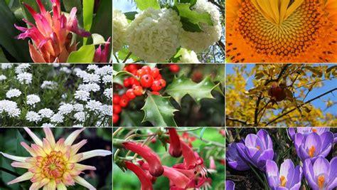 los jardines m 225 s mimados de espa 241 a espana ocholeguas