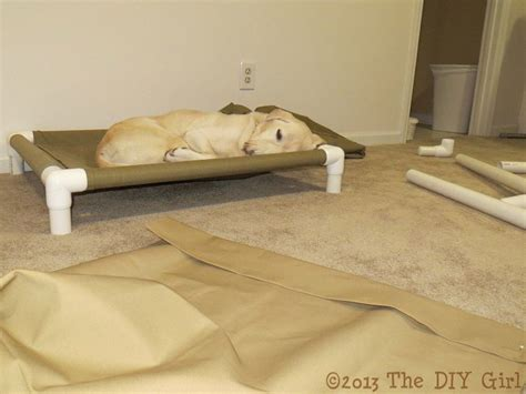 pvc pipe dog bed 40 brilliant ways to use pvc pipes