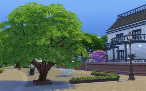sims 4 cherry tree mod the sims updated pink trees begone cherry trees texture override