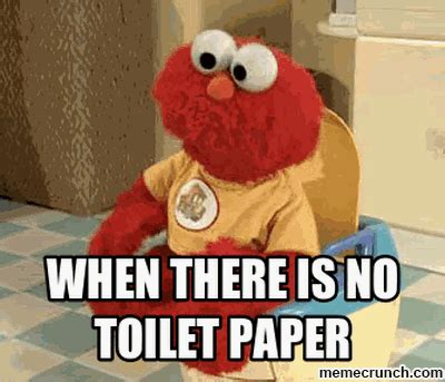 No Toilet Paper Meme - could someone please tell my family the toilet paper fairy