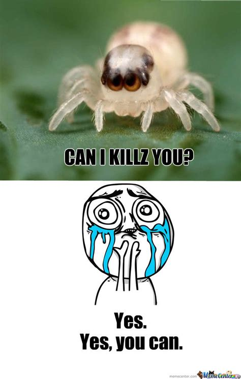 Cute Spider Memes - cute spider by recyclebin meme center
