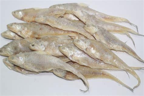 Ikan Asin Bulu Ayam Besar preserved salted seafood makanan laut jeruk kering selamat datang ke