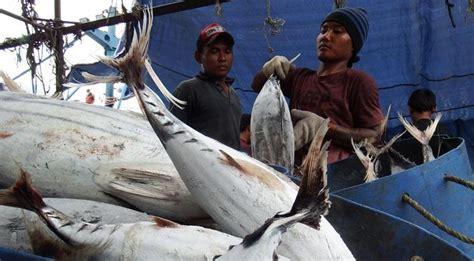 Dan Khasiat Sho Metal 26 manfaat dan khasiat ikan tuna albakora untuk kesehatan