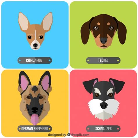variety of breeds variety of breeds stock images page everypixel