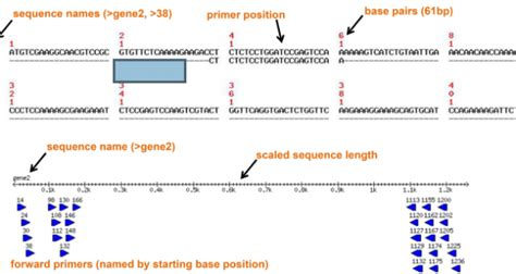 flux capacitor rna seq 28 images brain rna seq an rna sequencing transcriptome and splicing