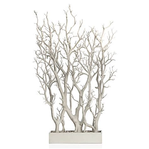 white branch tree white branch tree in pot potted plants trees floral