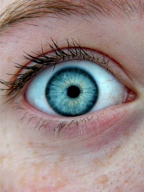 blue green eye color blue bluish gray pencil and in color