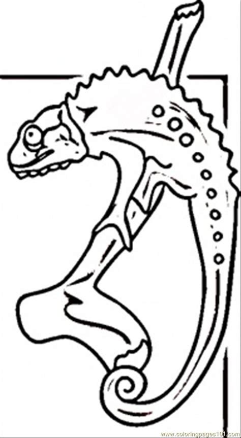 desert lizard coloring pages desert lizard colouring coloring pages list quoteko