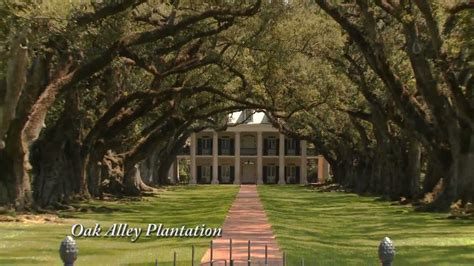 oak alley plantation new orleans plantation country new orleans plantation country tour oak alley plantation