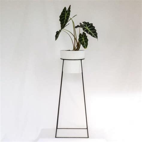 best indoor plants for your sad and lonely life broke 19 best basement entrance images on pinterest gardening