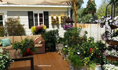 Grow A Container Vegetable Garden On Your Patio Tips Patio Gardening Tips