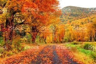 Ohio State Wall Murals autumn pics