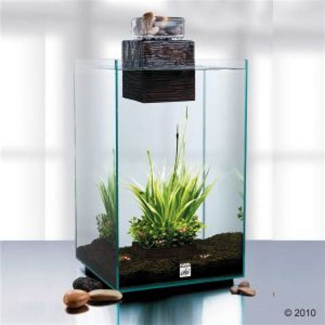 fluval chi aquarium fish tank 25 litre amazing