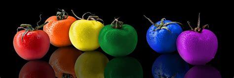 Tomat Multi Color free photo tomatoes tomato color rainbow free image on pixabay 1220774