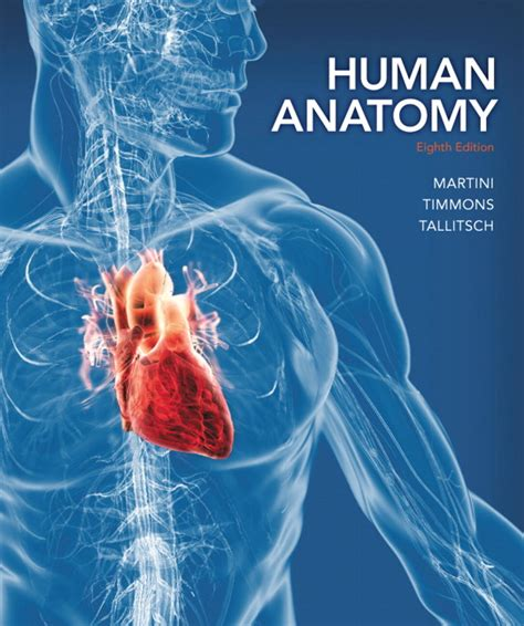 kaplan anatomy coloring book 4th edition 94 anatomy coloring book 4th edition pdf