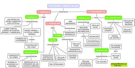 3 preguntas fundamentales de todo sistema economico tecnico industrial de facatativa blogg milena olarte 2012