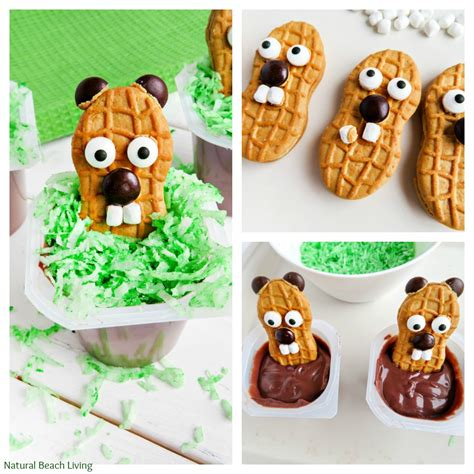 day snacks the cutest groundhog day snack idea for