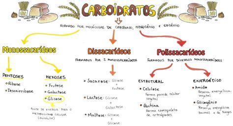 proteinas o que sæo desconversa mapa mental carboidratos
