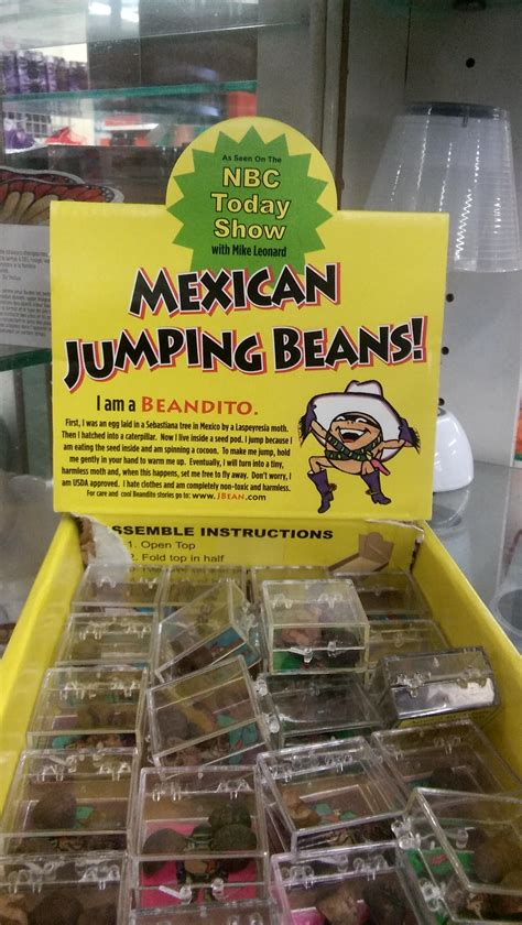 Jumping Beans 21 anyone owned mexican jumping beans page 2 ar15