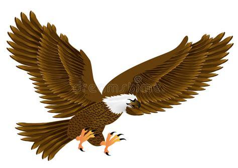 imagenes de aguilas sin fondo aigle de vol illustration de vecteur illustration du