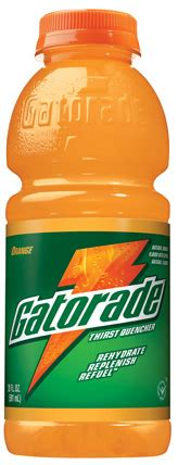 can dogs drink gatorade what to eat when you re hung