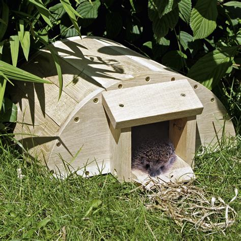 how to make a house a home hedgehog house dobies