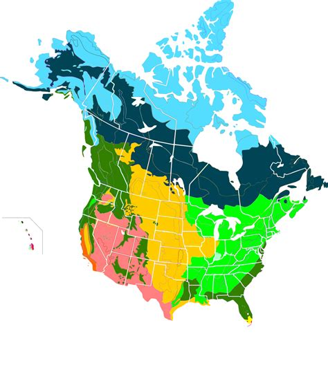 forest map of usa boreal forest of canada
