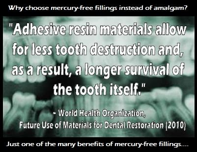 Thiol Resins Mercury Detox by 36 Best Images About Dental Mercury Amalgam On