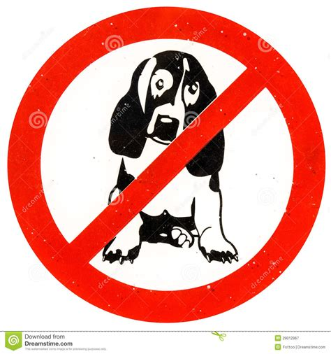 no puppies no dogs allowed royalty free stock photography image 29012967