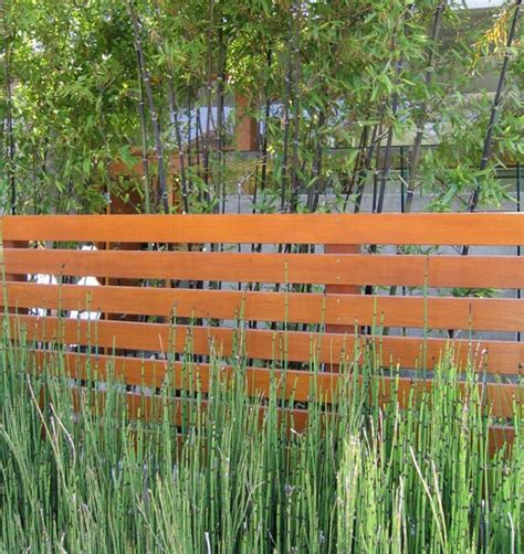 Modern Garden Fencing Ideas with 10 California Landsape Ideas For Contemporary Gardens Landscaperesource