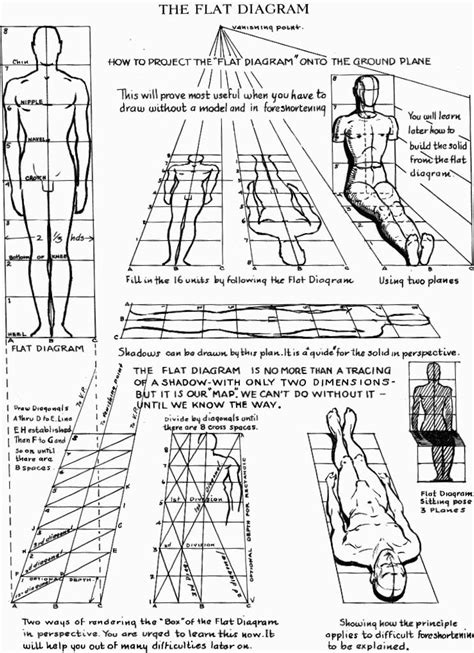 Proportions of the Human Figure : How to Draw the Human